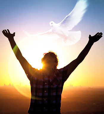 what is the holy spirit - dove