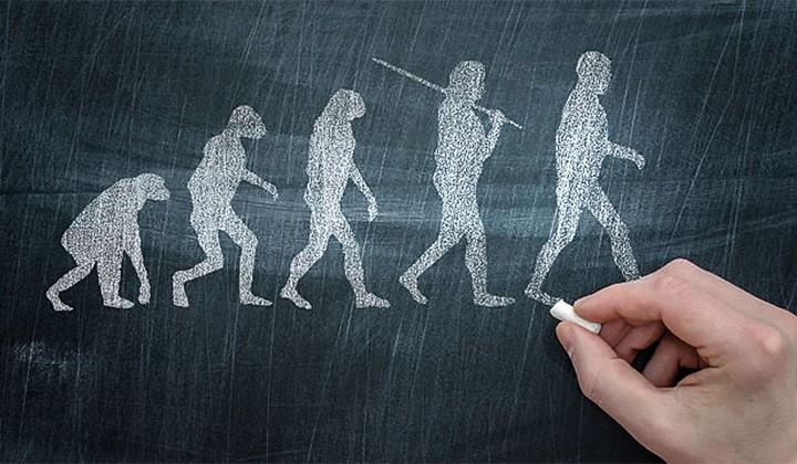Proof of evolution