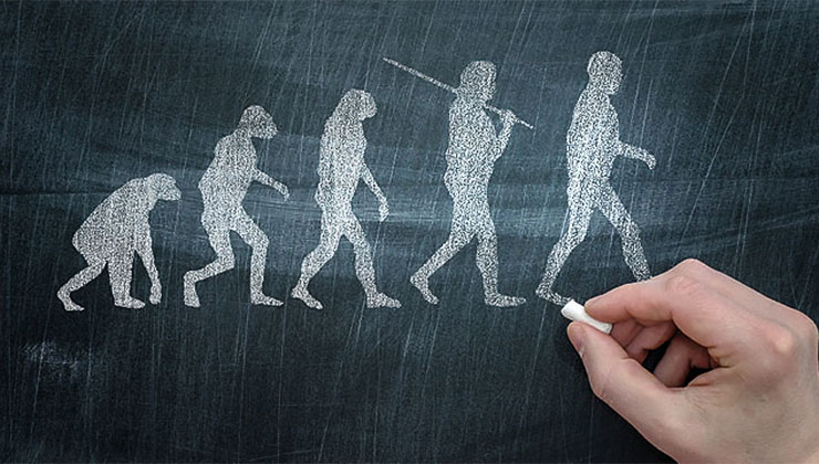proof of evolution science