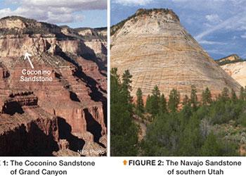 evidence flood sandstone