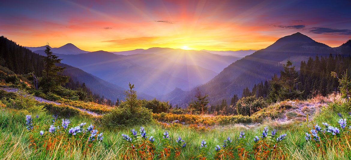 experience god nature