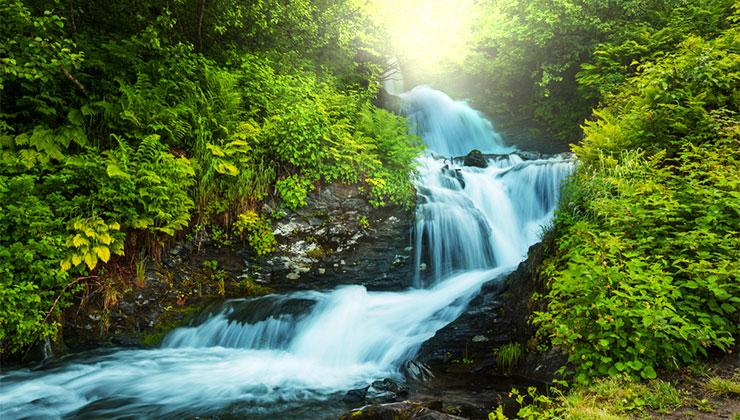rivers living water holy spirit