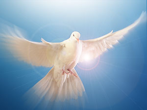 voice of god pentecost prophecy