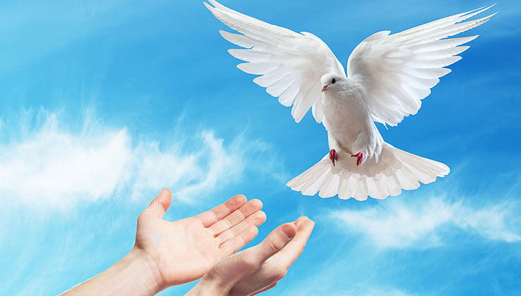 GIFTS of the Holy Spirit - All you need to know
