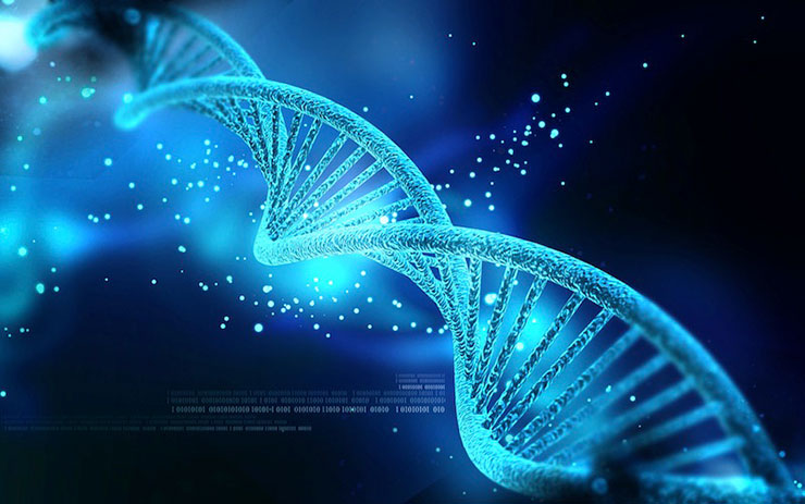 proof- volution dna