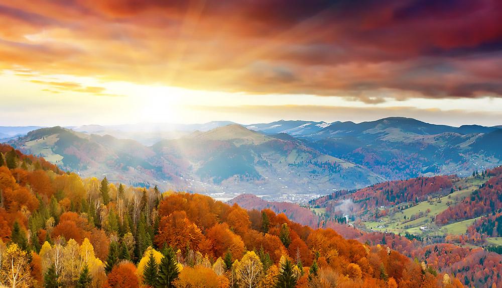 Jesus dawn new day